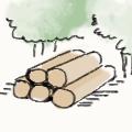 伐採された木